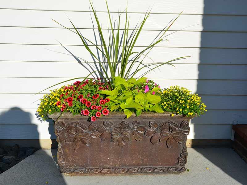 Container Master Gardener Design Installation Fargo ND