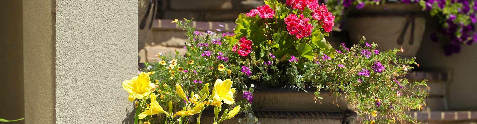 Flowers-Designs-Fargo-ND-NEL-e1491318011950-1