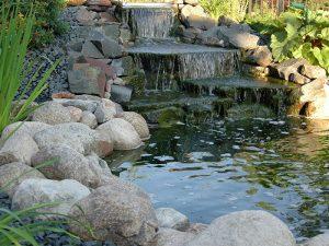 Pond Supplies Fargo ND 001
