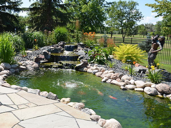 Backyard pond supplies outdoor goods for Fish pond supplies near me
