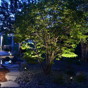 Spot Lighting Tree Landscaping Fargo ND NEL